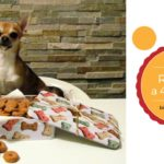 Ricette per cani Chihuahua